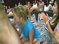Crazed sluts suck cock in front of everyone