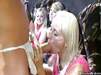Horny girls have fun with a dancing cock