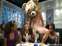Bear mascot has head party