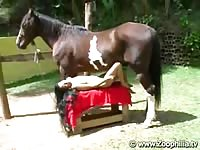 Tramp positions herself under horse and enjoys getting fucked by the animal for first time
