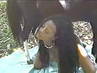 Black American female likes giving head to her brother's horse