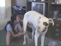 Mexican milf is gently fucking with her obedient dog
