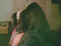 Horny dark-haired girl is getting fucked by her obedient doggy