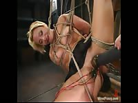 Provocative BDSM video featuring an amateur cougar pleasured anally while in restraints here
