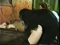 Horny dog wildly fucks its mistress in the bedroom