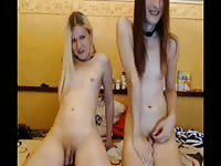 Horny blonde is giving head to her perverted shemale friend
