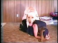 My fragile looking wife fucks with our golden retriever zoo porn dog sex xxx dog animals porn - Zoo Porn Dog Sex, Zoophilia