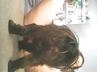 Webcam dog sex motherless com zooporn zoo porn dog xxx
