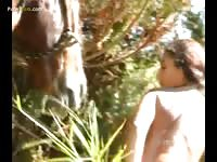 Brunette full penetration with large horse