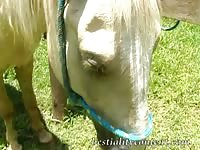 Super hot farm girl stars in horse porn