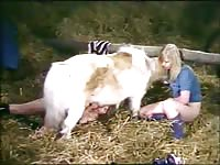 Blonde having sex with small pony in farm porn shoot