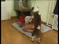 Zooskool -  On four to my dog