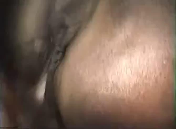 site penis mare