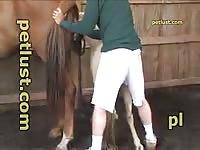 Bisexual Horse Fuck Petlust