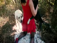 Outdoor dog bestiality with a Latina zoophile - Zoo Porn Dog Sex ...